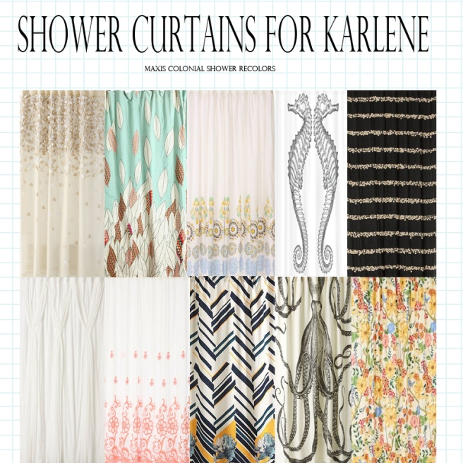 ShowerCurtainsForKarlene I